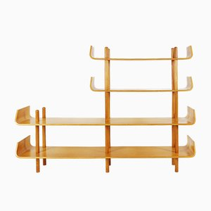Bentwood Shelf by Willem Lutjens for Gouda den Boer, 1950s