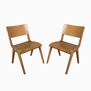 French Light Beech Compass Dining Chairs, 1950s, Set of 42