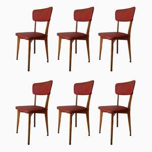 Chaises de Bistro Vintage de Luterma, années 50, Set de 6