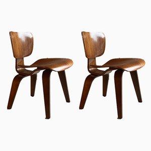 Sillas de comedor de Charles & Ray Eames para Herman Miller, años 50. Juego de 2