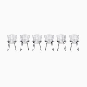 Dining Chairs by Harry Bertoia for Knoll Inc. / Knoll International, 1970s, Set of 6