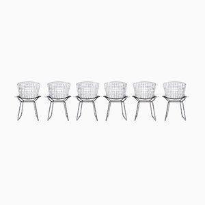 Esszimmerstühle von Harry Bertoia für Knoll Inc. / Knoll International, 1970er, 6er Set