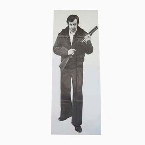 Póster de la película The Alpgaueur, 1976