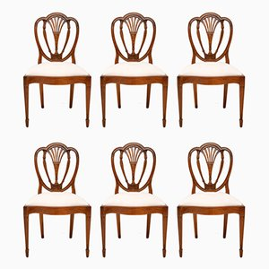 Antique Mahogany Sheraton Dining Chairs, Set of 6