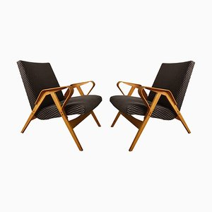 Mid-Century Bentwood Model 24-23 Armchairs from Tatra Nábytok, Set of 2