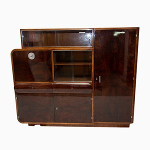 Bohemian Oak and Walnut Veneer Display Cabinet from Urban Company, 1930s