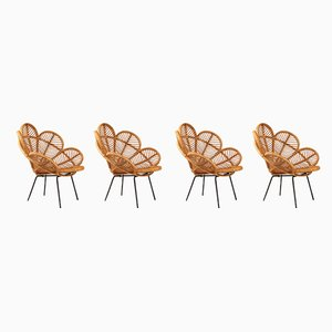 Mid-Century French Cane and Raffia Garden Chairs, Set of 4