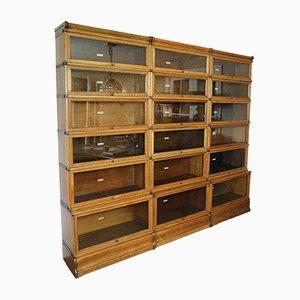 Mueble antiguo de roble de Globe Wernicke