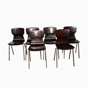 Esszimmerstühle aus Palisander von Eromes, 1960er, 6er Set