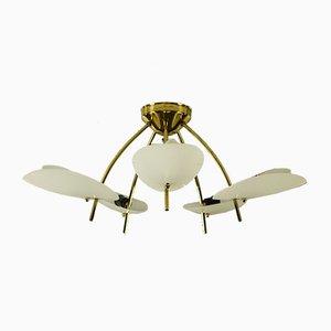 Lámpara de araña austriaca vintage de latón y acrílico, años 50