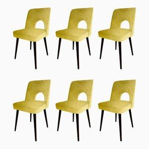 Chaises de Salle à Manger en Velours par Lesniewski pour Slupskie Fabryki Mebli, années 60, Set de 6