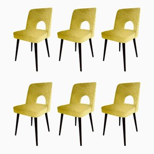 Velvet Dining Chairs by Lesniewski for Slupskie Fabryki Mebli, 1960s, Set of 6