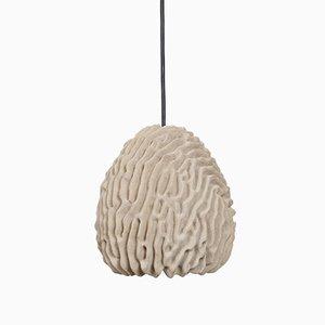Lampada Coral di Eric Geboers & Matteo Baldassari per Transnatural Label