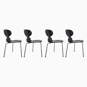 Esszimmerstühle von Arne Jacobsen für Fritz Hansen, 1950er, 4er Set