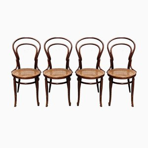 Nr.14 Dining Chairs by Michael Thonet for Jacob & Josef Kohn, 1920s, Set of 4