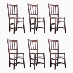 Dark Elm Dining Chairs, 1920s, Set of 6