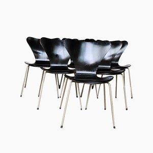 Esszimmerstühle von Arne Jacobsen für Fritz Hansen, 1950er, 6er Set
