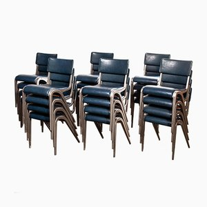 Dining Chairs by James Leonard for Esavian ESA, 1950s, Set of 24