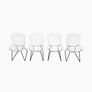 Mid-Century 420 Dining Chairs by Harry Bertoia for knoll, Set of 4