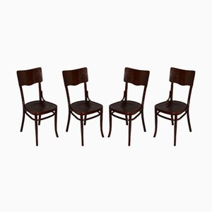 Vintage Polish Dining Chairs from Fabryka Mebli Gyetych Jozef Mintzis Ka. W. Radomsko, 1920s, Set of 4