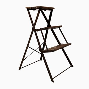 Vintage Italian Folding Iron and Wood Ladder, 1900s