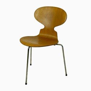 Dreibeiniger Modell 3100 Ant Stuhl von Arne Jacobsen für Fritz Hansen, 1950er