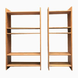 Vintage Wall Units by Pierre Chapo for Maison Regain, Set of 2