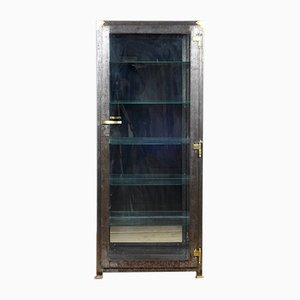 Iron Medical Display Cabinet With Brass Details, 1920s