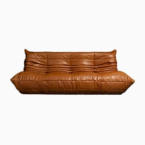 Cognac Leather Togo Tosca 1503 Sofa by Michel Ducaroy for Ligne Roset, 1973