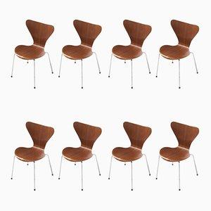 Chaises de Salle à Manger Série 7 en Teck par Arne Jacobsen pour Fritz Hansen, années 50, Set de 8