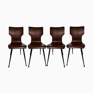 Bugholz Esszimmerstühle von Carlo Ratti für Società Compensati Curvi, 1950er, 4er Set