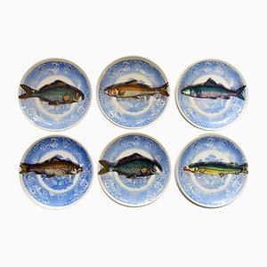Mid-Century Porcelain Picibus Fish Plates by Atelier Fornasetti for Piero Fornasetti, Set of 6