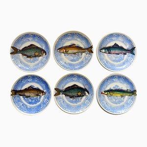Platos Picibus Mid-Century en forma de pez de porcelana de Atelier Fornasetti para Piero Fornasetti. Juego de 6