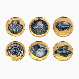 Platos de porcelana y conchas doradas de Atelier Fornasetti, años 50. Juego de 6