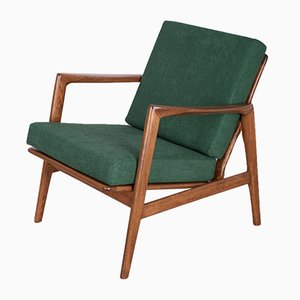 300-139 Armchair from Swarzędzka Factory, 1960s