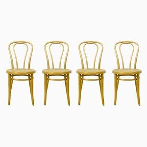 Beistellstühle aus Bugholz, 1960er, 4er Set