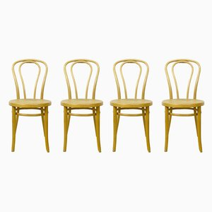 Bentwood Side Chairs, 1960s, Set of 4