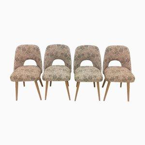Esszimmerstühle von Oswald Haerdtl, 1950er, 4er Set