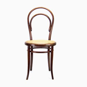 Antique Austrian Model 14 Rosewood Dining Chair from Thonet