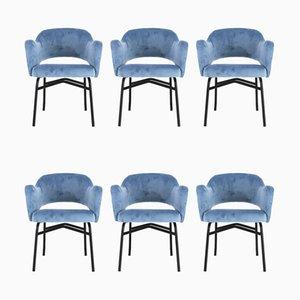 Italienische Mid-Century Esszimmerstühle mit blauen Samtbezügen, 1950er, 6er Set