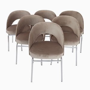 Italian Taupe Velvet Dining Chairs, 1950s, Set of 6