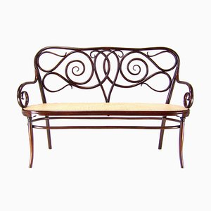 Antique Bench by Michael Thonet for Jacob & Josef Kohn, 1870s