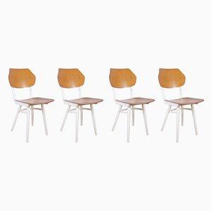 Esszimmerstühle von TON, 1960er, 4er Set