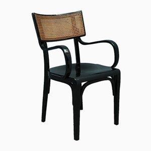 Silla de comedor modernista antigua de madera negra y paja, años 10