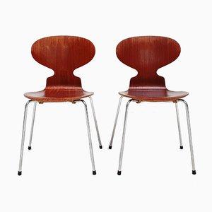 Sillas Ant modelo 3100 vintage de Arne Jacobsen para Fritz Hansen, años 50. Juego de 2