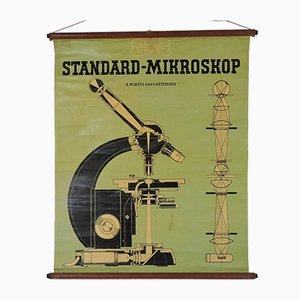 Vintage Standard Mikroskop Lehrtafel von Zeiss Winkel, 1940er