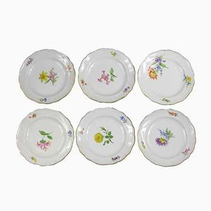 Vintage German Porcelain Dessert Plates, Set of 6
