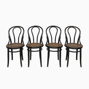 Chaises de Salle à Manger Antiques en Bois Courbé de Thonet, Set de 4