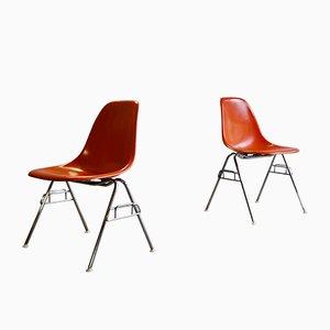 Chaises de Salle à Manger en Fibre de Verre par Charles & Ray Eames pour Herman Miller, 1970s, Set de 2