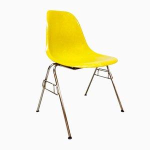 Vintage Shell Chair aus Fiberglas von Ray & Charles Eames für Herman Miller, 1960er
